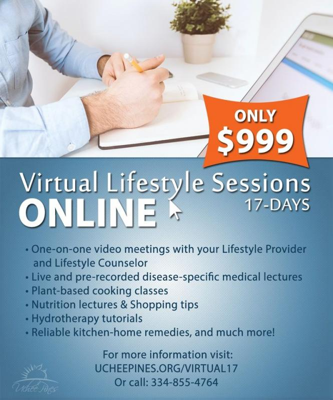 Virtual Lifestyle Session 17 day